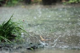 hujan03