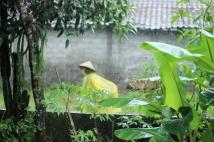 hujan09